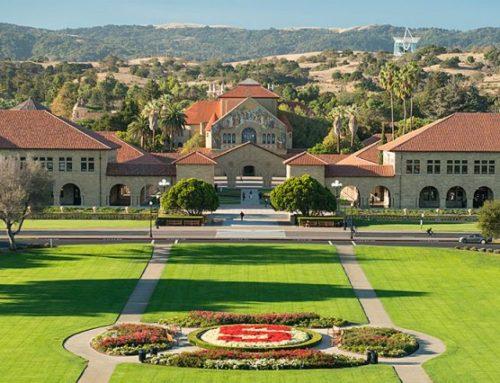 Vivametrica Announces Full-time Bay Area Presence